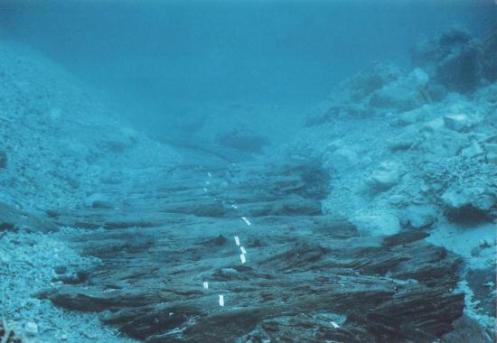 Ontario Reef
